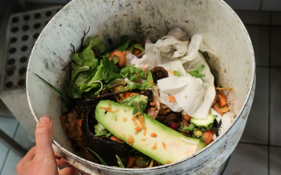 Composting for Healthier Soils and Healthier Food